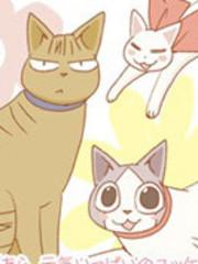 希镰仓与猫的记事簿